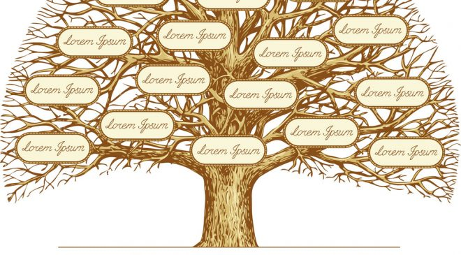 A Genealogy Guide